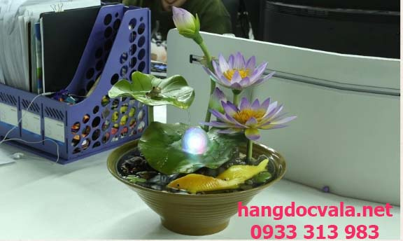 Thac nuoc mini de ban mua hoa sung