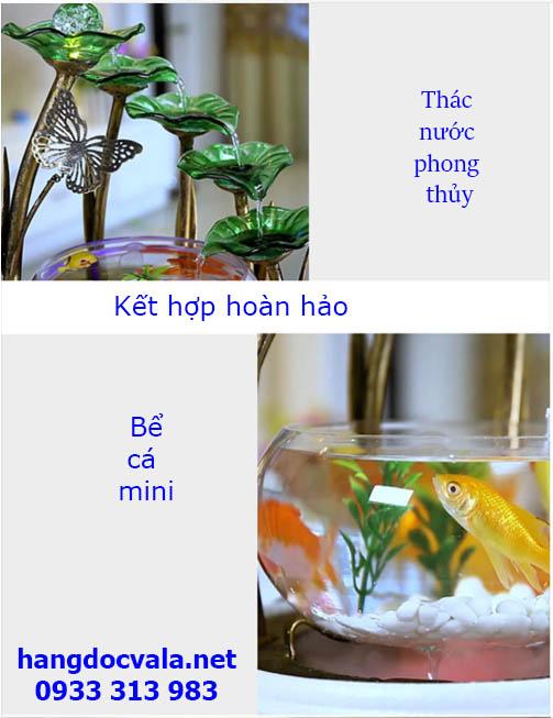 bể cá thủy sinh mini